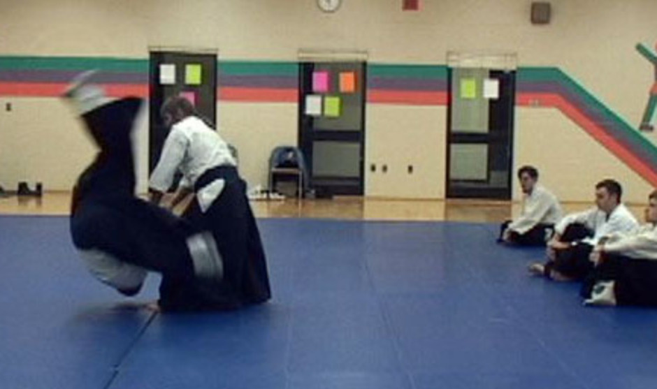 Spring Session 2 Adult Aikido