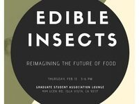 Edible Insects: Re-imaging the Future of Food