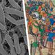 """Images representing Interdisciplinary Colloquium theme of """"Filth and Foulness"""""""