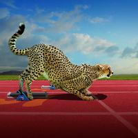 Natural Athletes