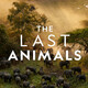 Animal Voices Film Festival: The Last Animals