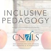 Inclusive Pedagogy at CNDLS