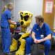 Wildcat Wellness Health Fair
