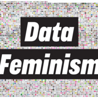 The Data + Feminism Lab hosts Joana Varon