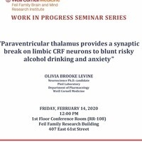 Brain & Mind Research Institute (BMRI) Work in Progress Seminar