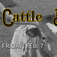 Turtle Soup: Cattle Drives