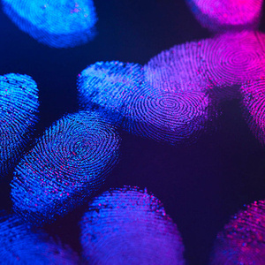 Forensic Fingerprint Workshop