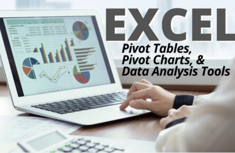 Excel #4: Pivot Tables, Pivot Charts and Data Analysis Tools