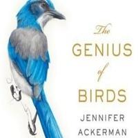Wild Coachella: The Genius of Birds