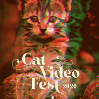 CatVideoFest 2020 Comes to Silver Spring