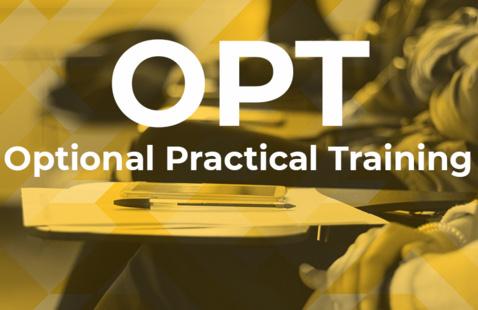Optional Practical Training Workshop