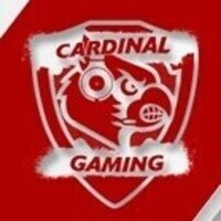 Cardinal Gaming Smash Tournament