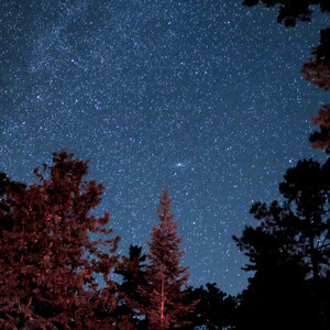 Canceled: Stargazing and Hiking - Outdoor Program Trip