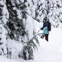 Beginner Snowshoe, now is your chance to try something new!