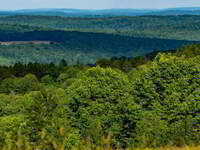 The Finger Lakes Land Trust: Forever Protecting the Lands and Waters of the Finger Lakes Region