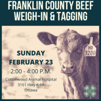 Franklin County 4-H Beef Weigh-in & Tagging