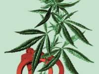 """CANCELLED: Noliwe Rooks: """"Legalize It? A Story of Cannabis, Race, Global Capital, and Civil Wrongs"""""""