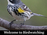 [CANCELLED] Welcome to Birdwatching