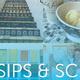 Bonnie Pitman at Virtual Sips & Science