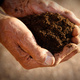 From Dirt to Gut: Decolonizing Soil and Human Gut Microbiomes