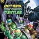 Film: Batman vs Teenage Mutant Ninja Turtles