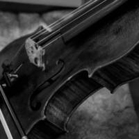 Cecilia Reis Araujo - Viola Master's Recital