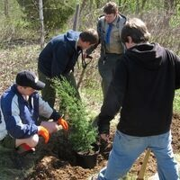 Tree-Planting Along Swatara Creek