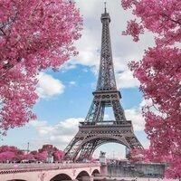 Spring Gathering with Reedies in Paris