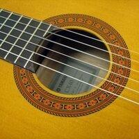 CANCELED Senior Recital - Nicholas Robinson, guitar