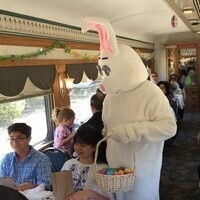 Easter Lunch Train