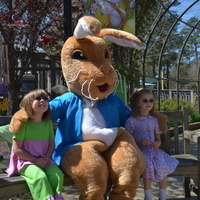 Peter Rabbit with guests