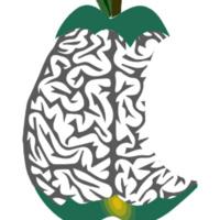 Neuroimaging Journal Club