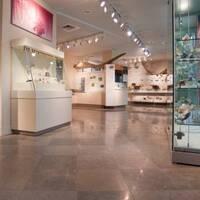 Robert M. Linsley Geology Museum Open Hours