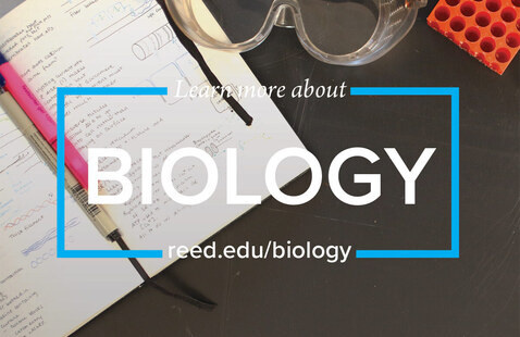 Summer Research, Internships & Other Opportunities in Biology