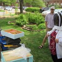 CANCELED: Pollinators & Beekeeping Workshop