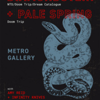 DIAMONDSTEIN + PALE SPRING, wtih Amy Reid & Infinity Knives @ The Metro Gallery