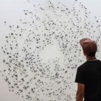 Visiting Artist: Frances Gallardo