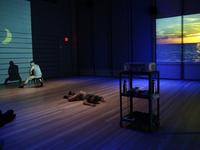 Alexandro Segade: Selves Among Others: An Artist's Talk