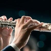 LIVE STREAM ONLY: Graduate Recital: Anna Vanderboon, flute