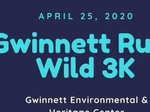 Gwinnett runs wild 3k