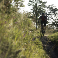 Mountain Biking at Whypass Trail System