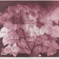 Postponed: Bringing Light into the Darkness: Mezzotint Prints from the Rossof Collection