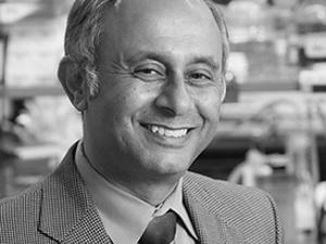 P. Jay Pasricha, MBBS, MD - Johns Hopkins Medicine