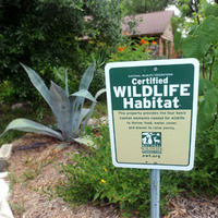 MOVED ONLINE...How to Create a Wildlife Habitat in Your Home Garden Workshop
