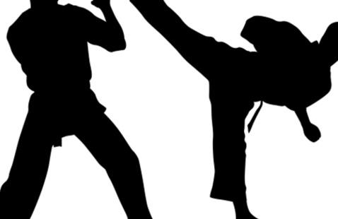 Karate at the Pratt!