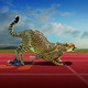 Natural Athletes: Track & Field Champs of the Animal Kingdom