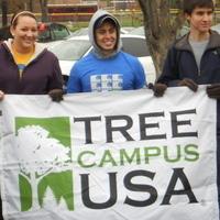 VIRTUAL: Campus Tree Advisory Committee Spring 2020 Meeting