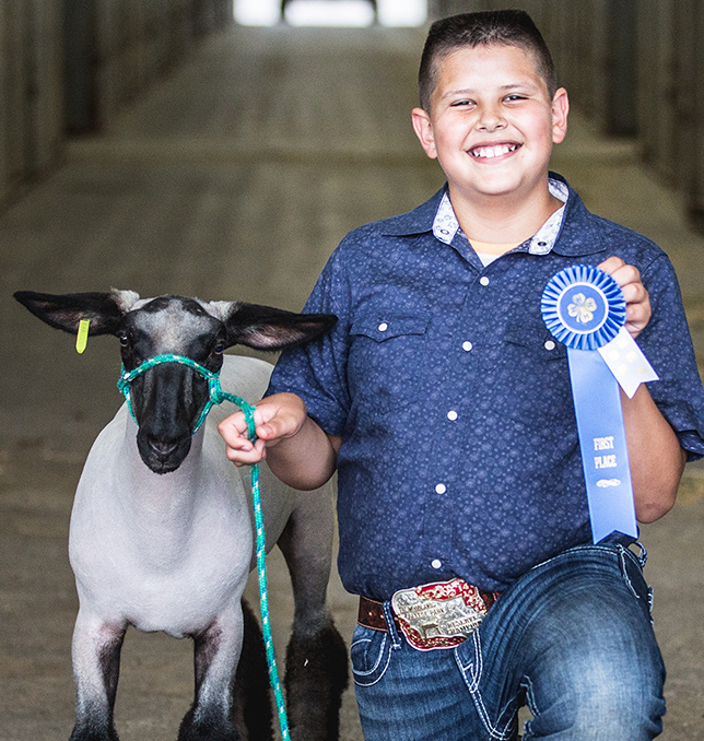 Won 1st place in the Goat Project