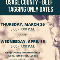 Osage County Beef Tagging