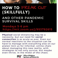 Virtual: How to Freak Out Skillfully, and Other Pandemic Survival Skills